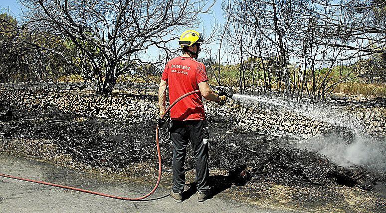El juez deja libres a los dos detenidos por causar un incendio que quemó 6 hectáreas en Llucmajor