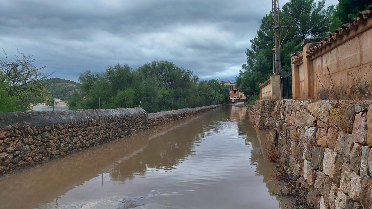 El camino Pla de Son Llarg de Andratx, inundado.