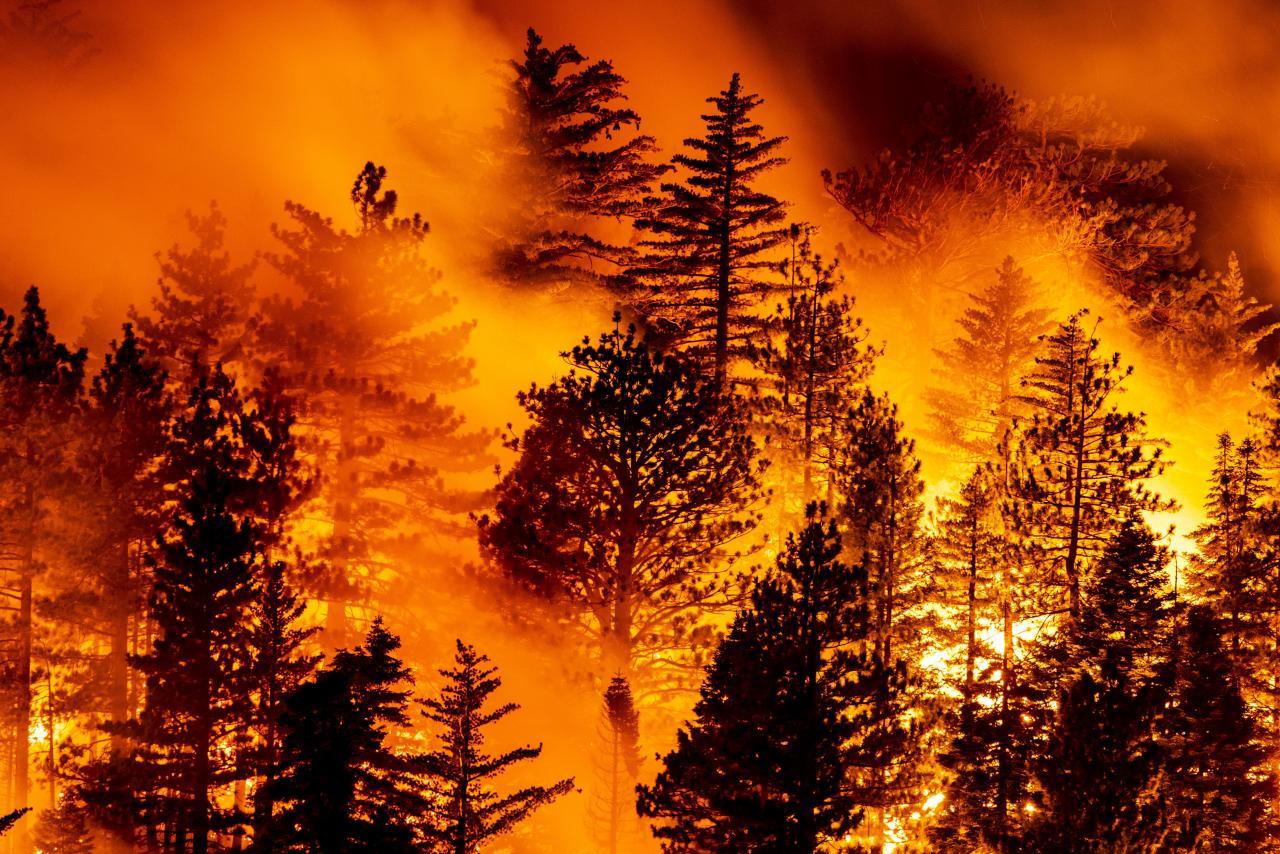 Bobcat Fire burns North of Monrovia
