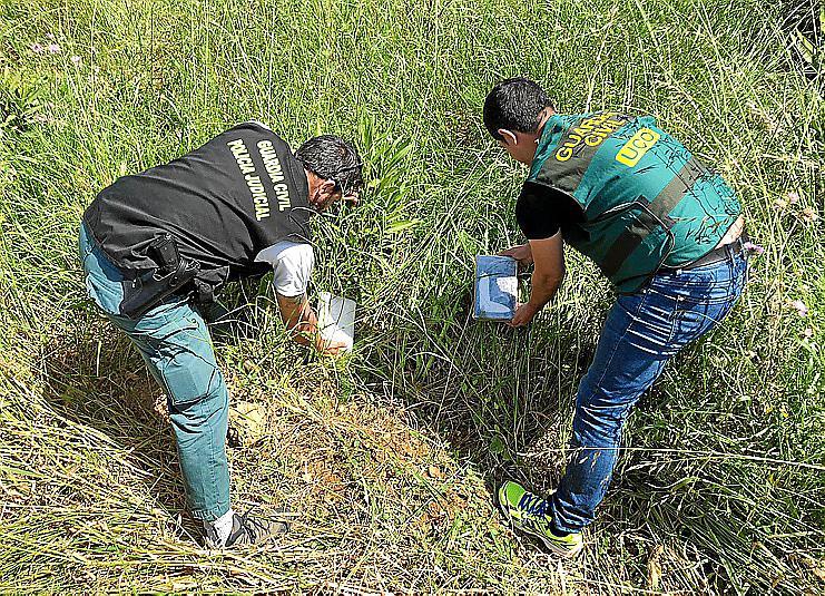PALMA - DESARTICULADAS LAS CUPULAS DE LOS NARCOS DE SON BANYA EN LA