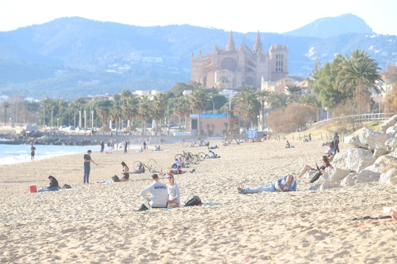 Temperaturas primaverales en Mallorca y récord en Lluc