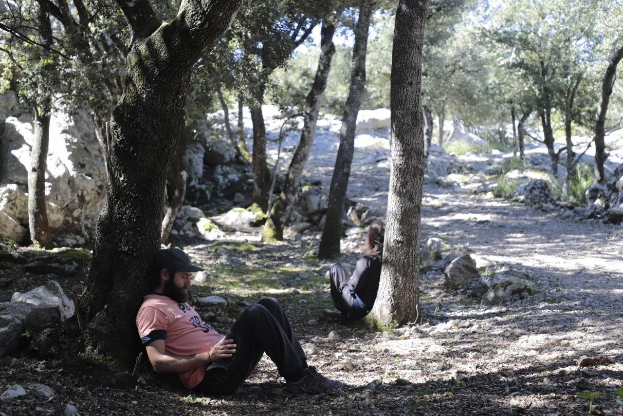 MALLORCA - Baños de Bosque en Mallorca, en el bosque de La Cometa dels Morts.