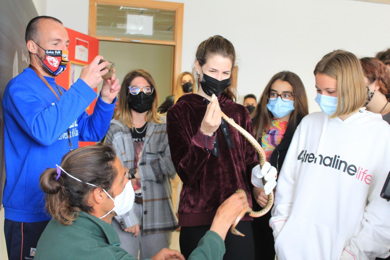 Santa Eulària formará este sábado a 200 voluntarios en la lucha contra las serpientes