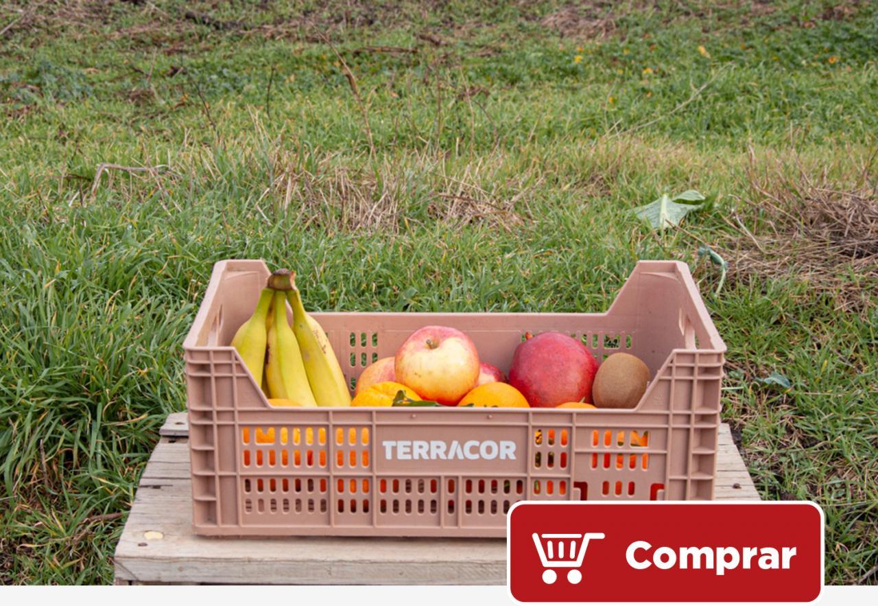 Terragust - Caja de frutas variadas
