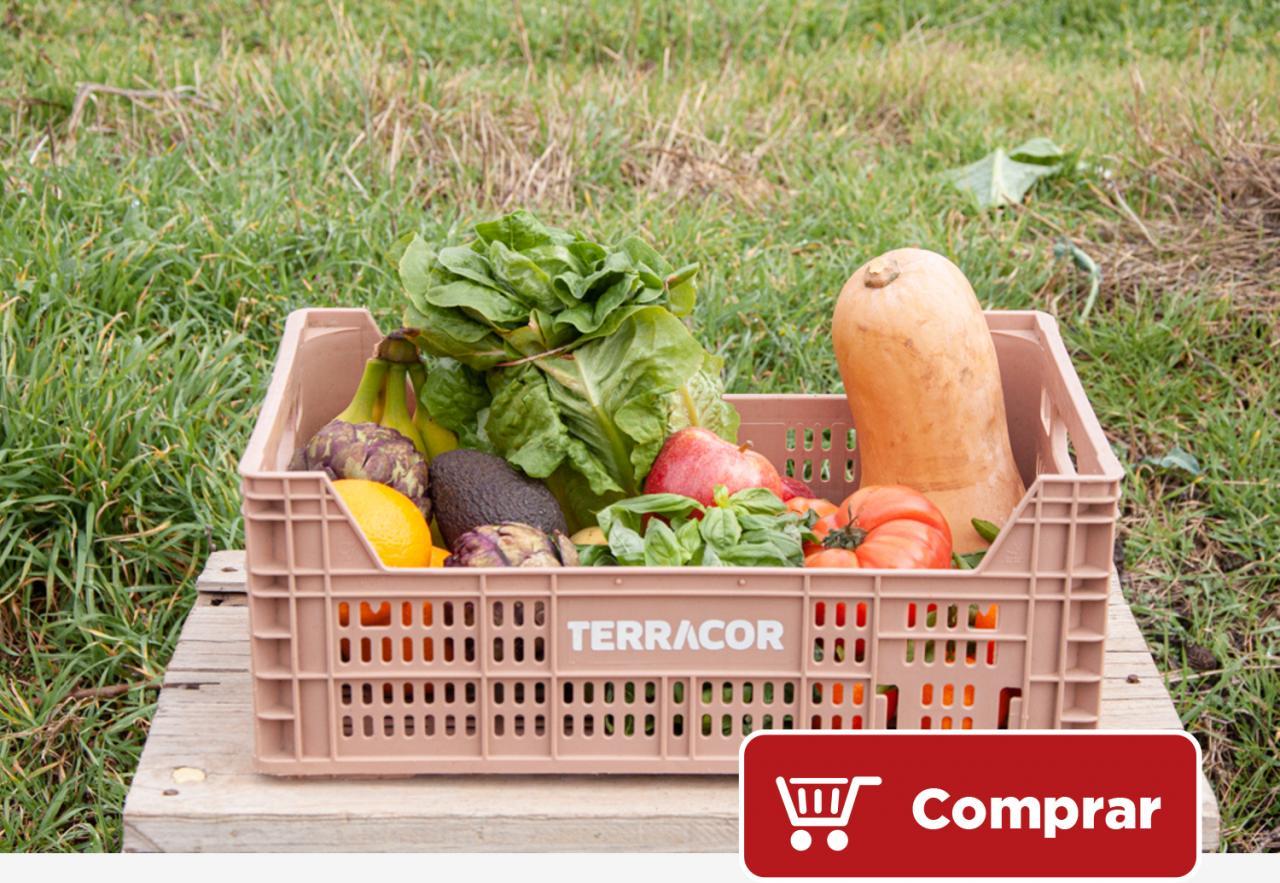 Terragust - Caja de fruta y verduras