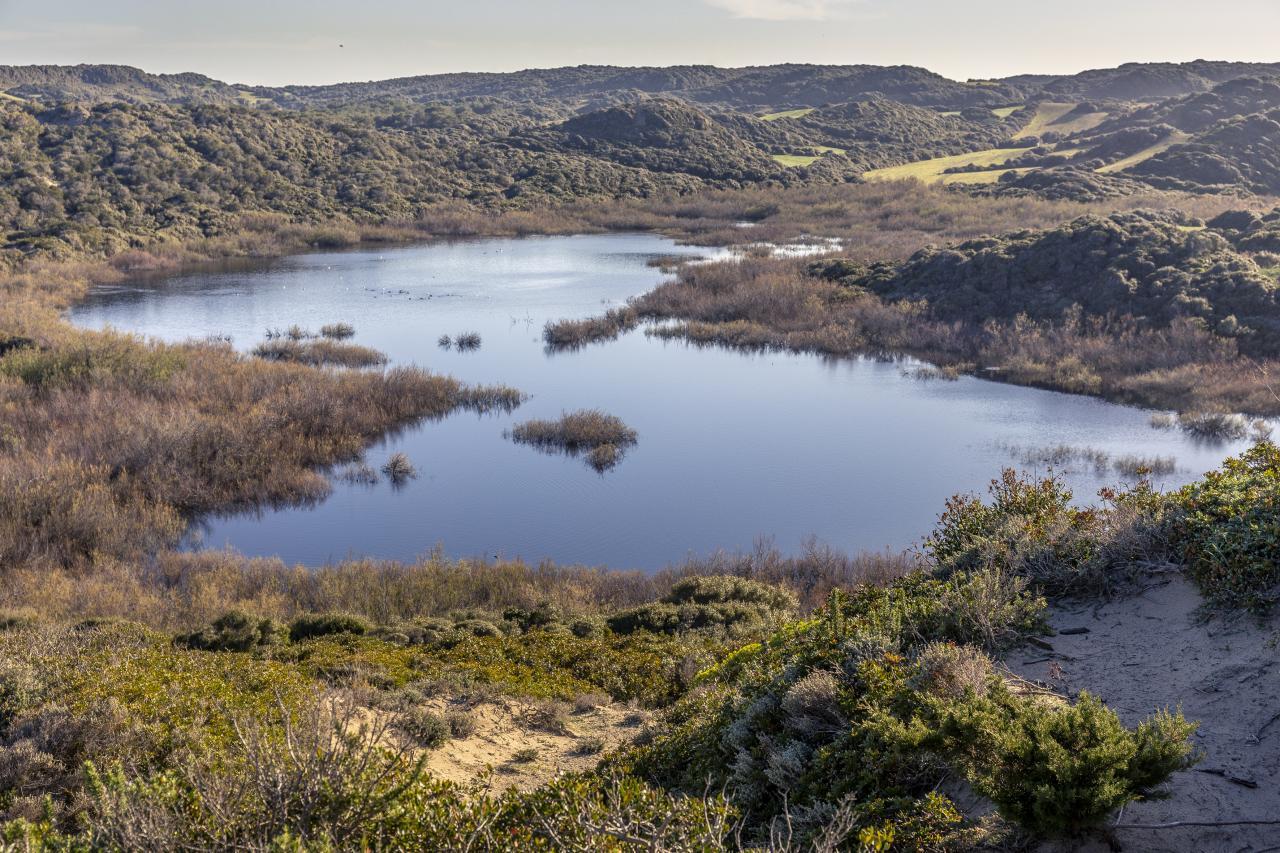 Bassa de Morella.