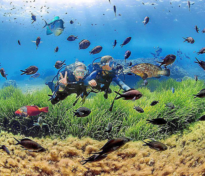 PALMA. OCEANOGRAFIA. EducaciÛn bajo el agua. El Club N‡utic de søArenal, sede del primer campus