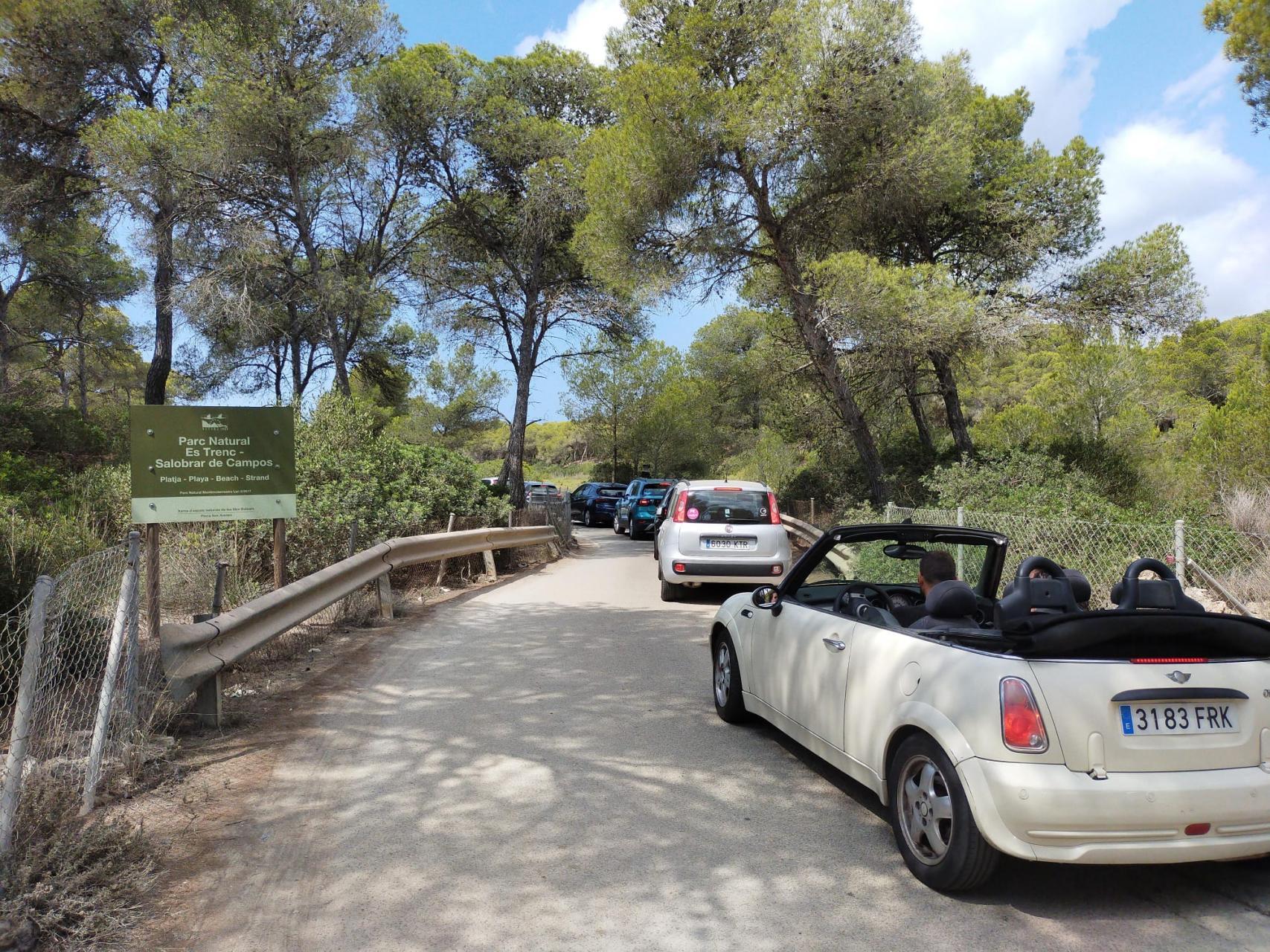 CAMPOS - Caos total en pleno parque natural para acceder al párking de la playa de es Trenc.