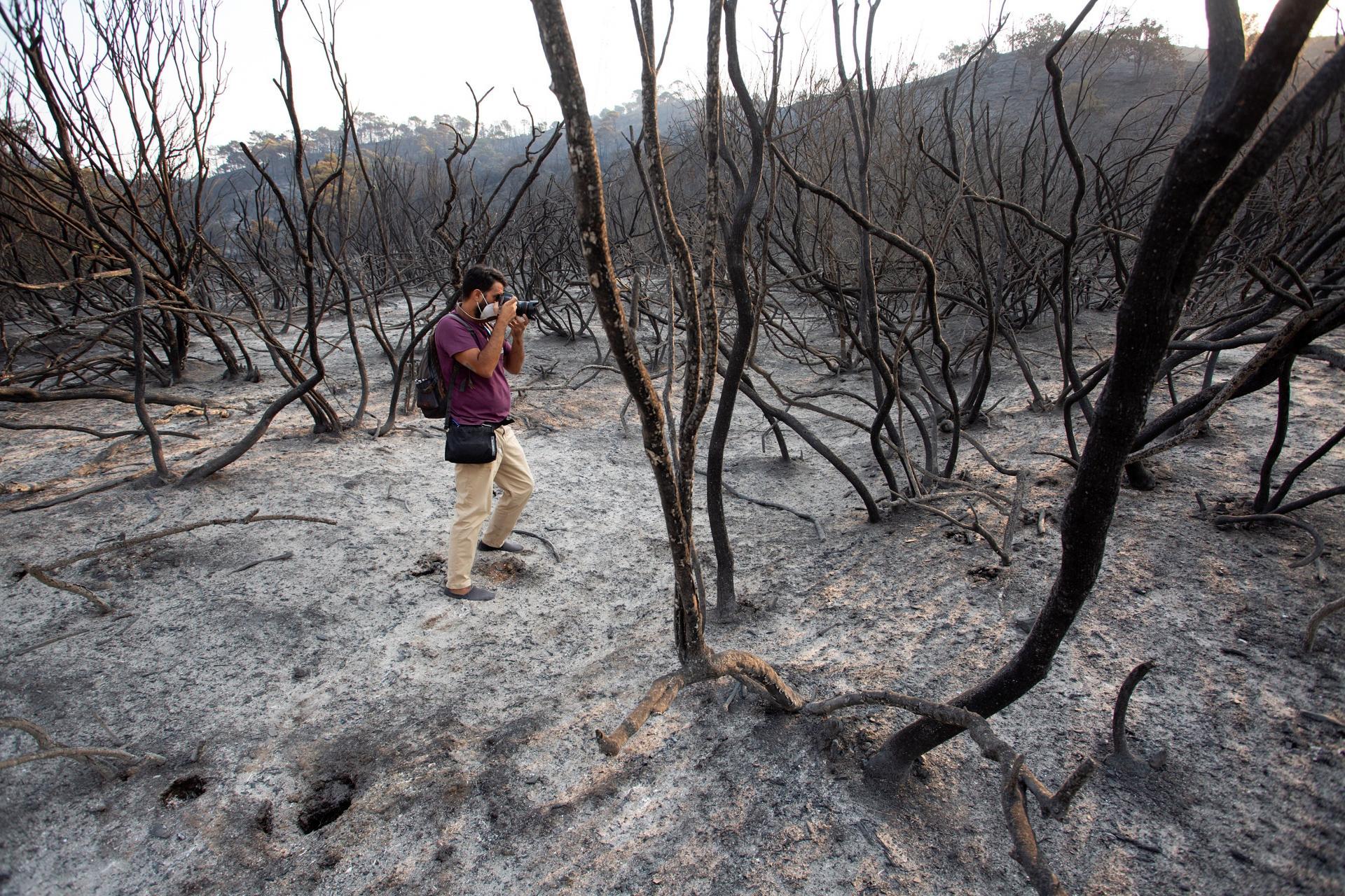 El incendio forestal de Sierra Bermeja afecta ya unas 3.600 hectáreas