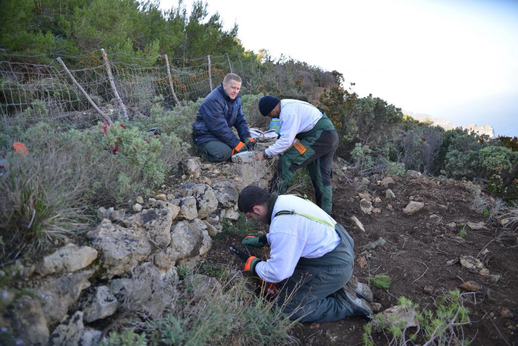 250 parados de larga duración participan en los 25 talleres ocupacionales del SOIB