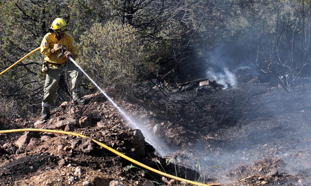 Cala Vedella: primer incendio bajo control
