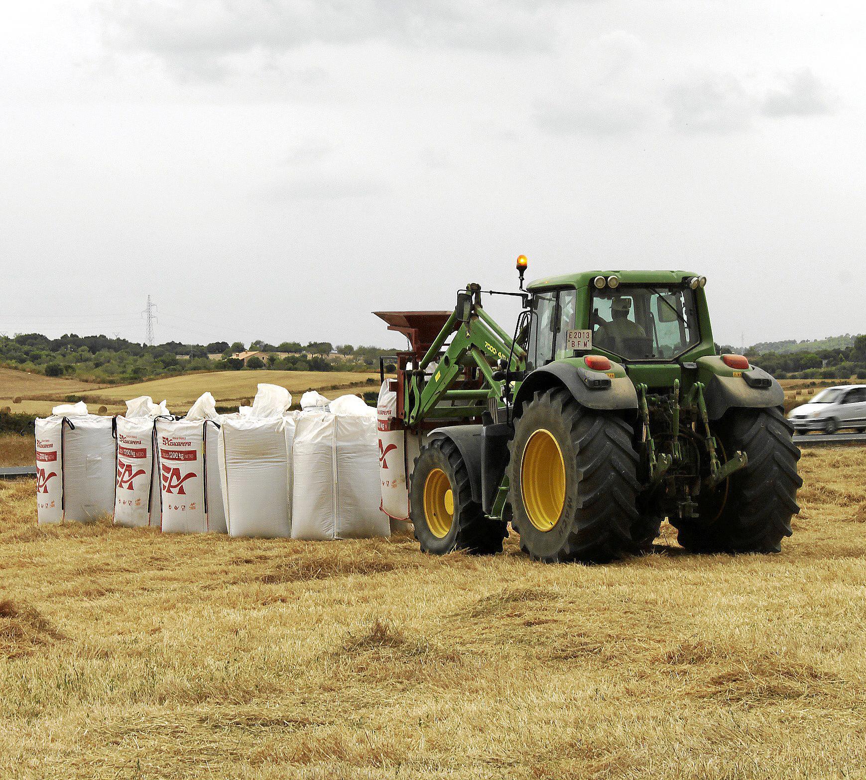 Finaliza la campaña de cosecha de cereales con unos «malos resultados»