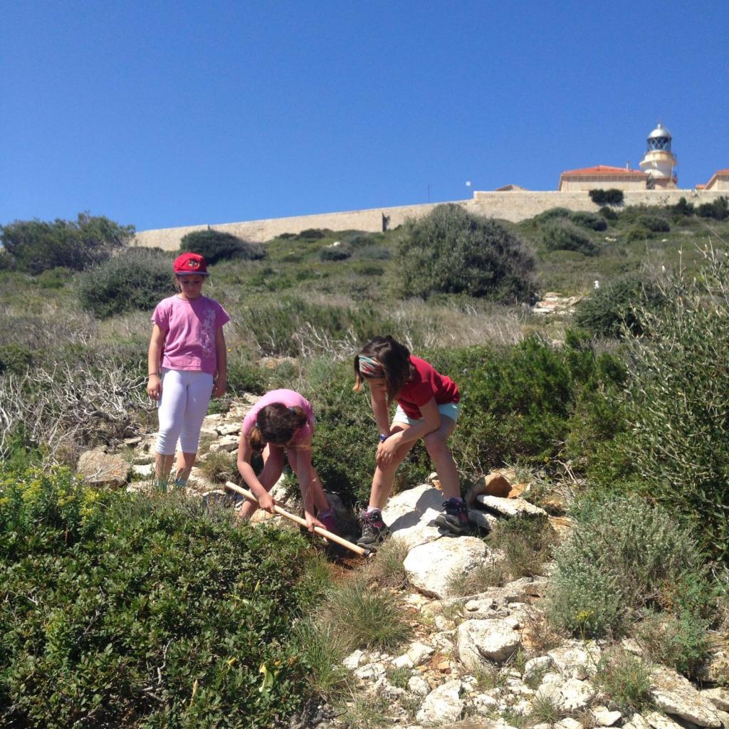 Familias del colegio Aina Moll plantan 1.200 palmitos en sa Dragonera