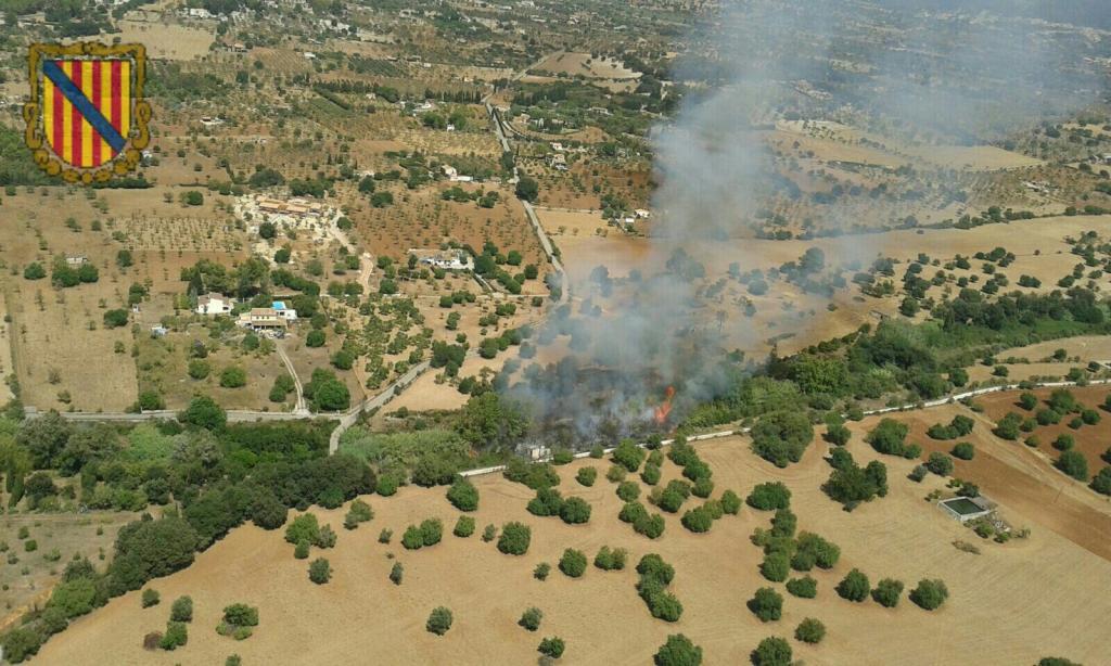 Extinguido el incendio forestal en Son Fuster, Selva