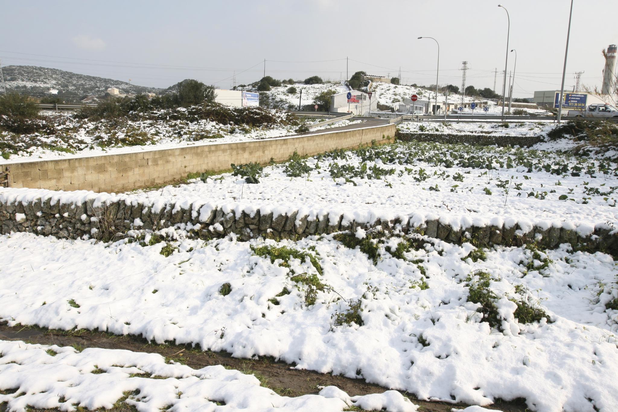 MenorcaNieve NeuFrio FredInvierno HivernCami Camino d'en Kane