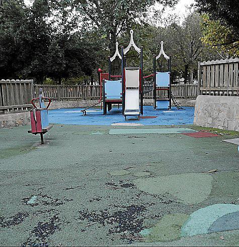 palma parque son cotoner foto morey