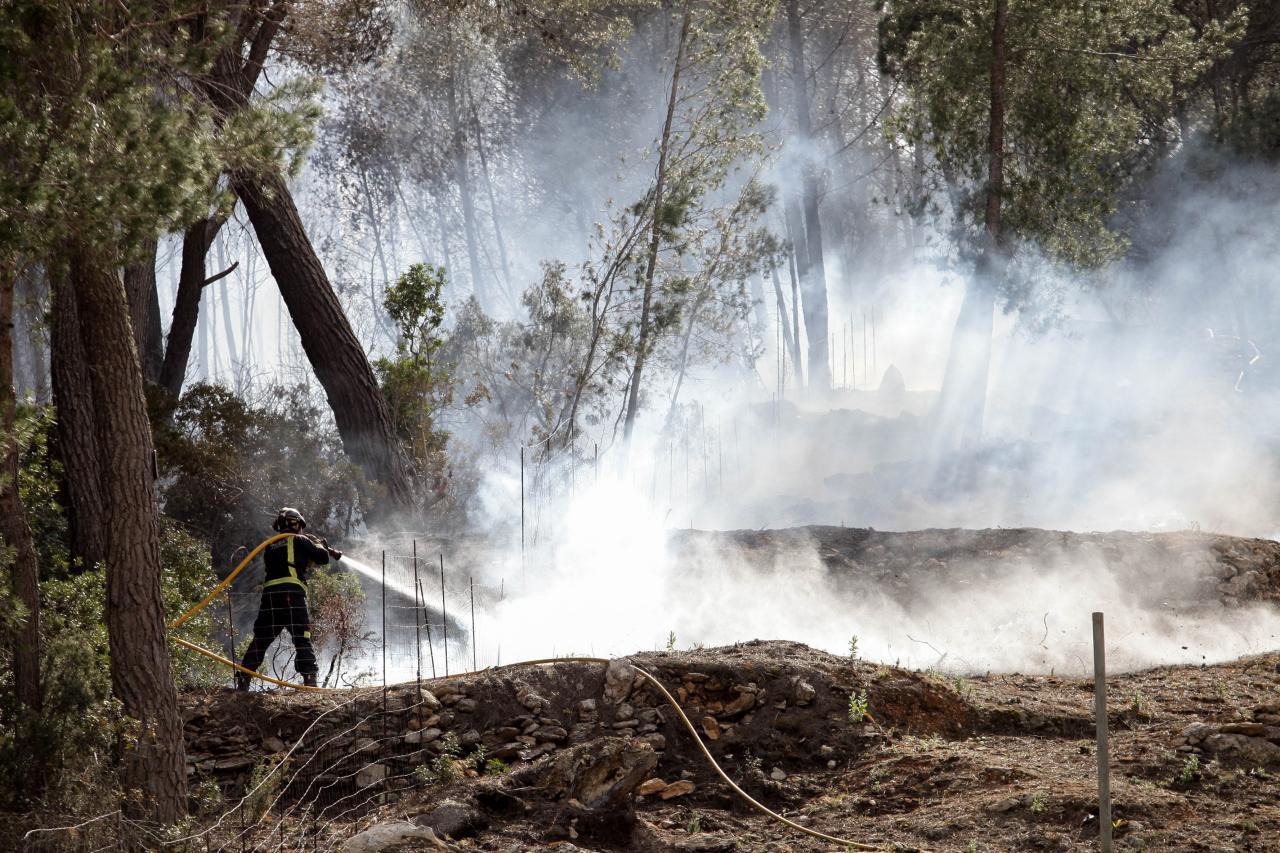 La primavera arranca con un primer gran incendio que quema una hectárea en Sant Mateu