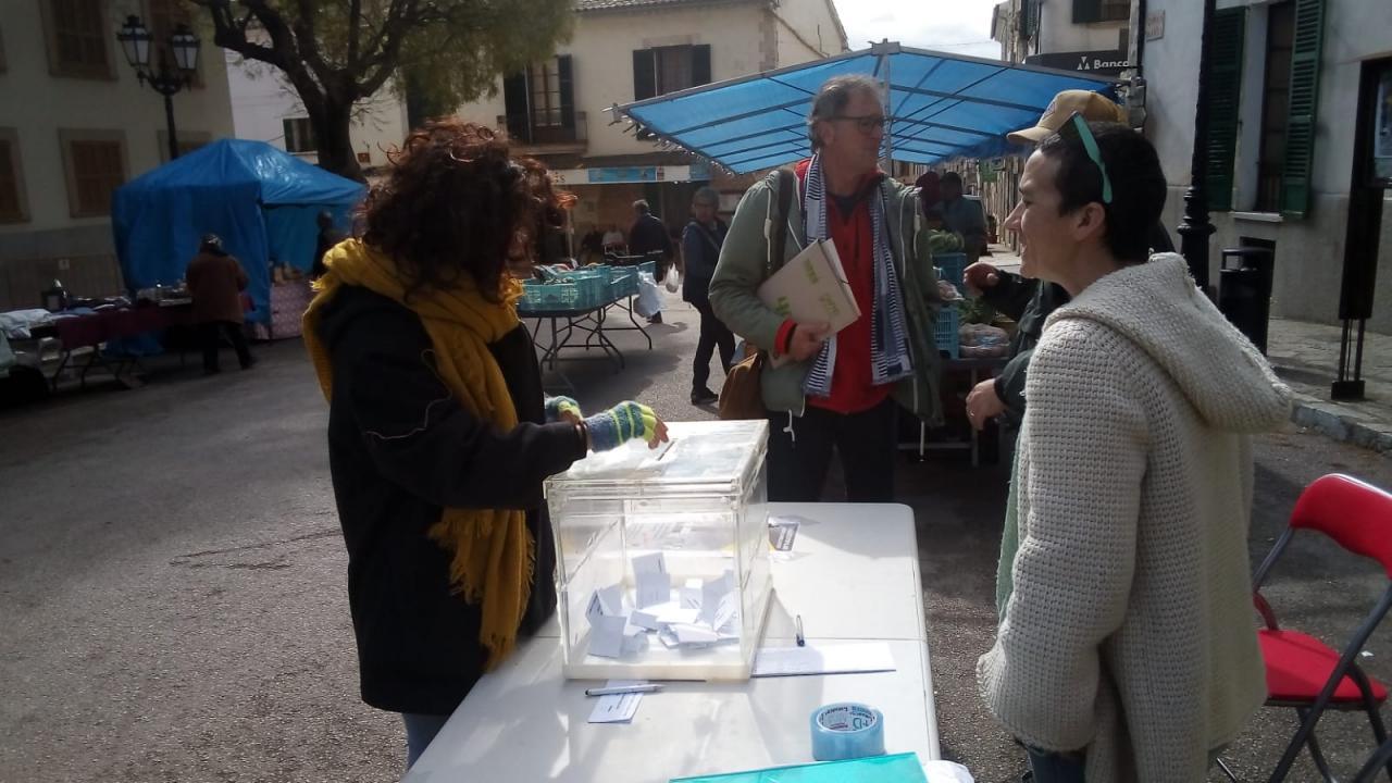 En Sencelles también se ha votado la consulta popular