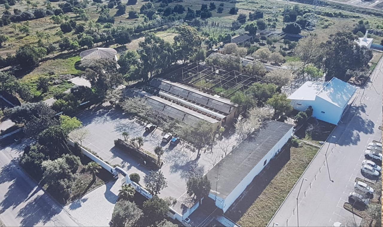 Imagen actual de las instalaciones del Centro de Protección Animal de Son Reus