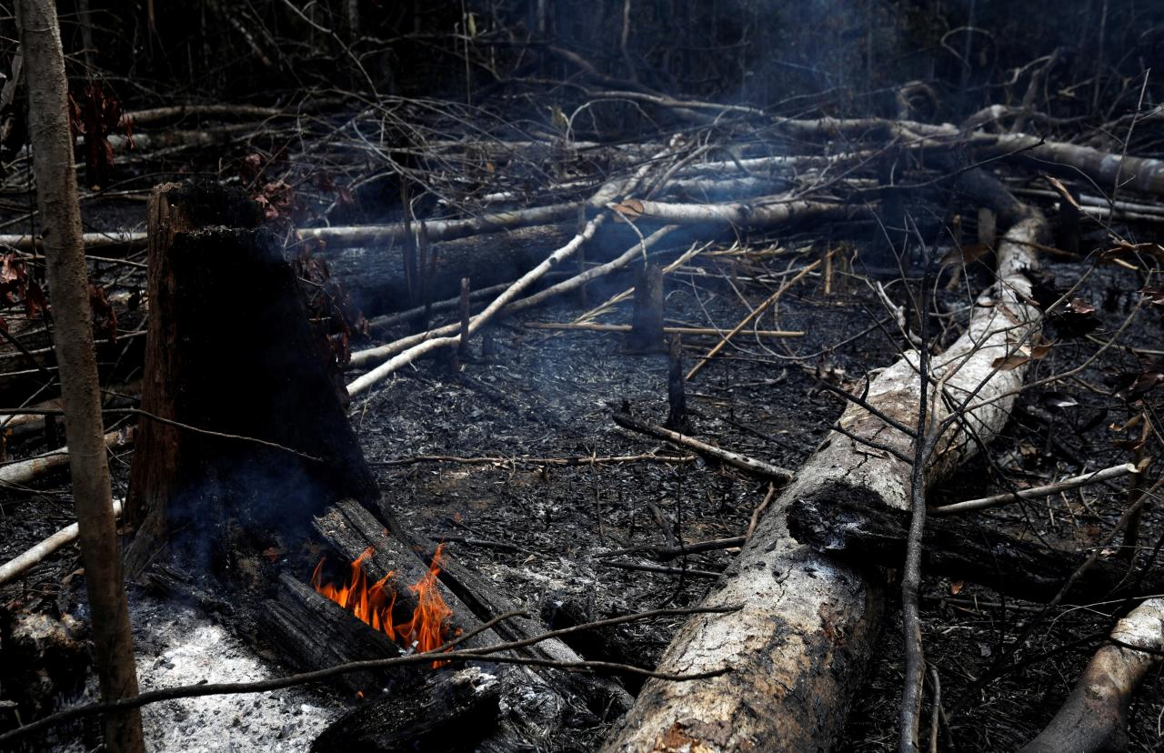 A tract of Amazon jungle burns as it is being cleared by loggers and farmers in Novo Airao