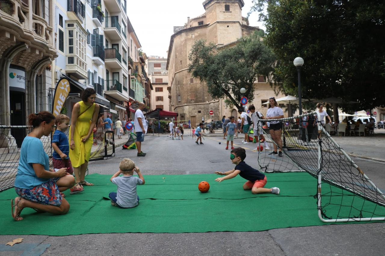 Palma, Discreto, Movilidad