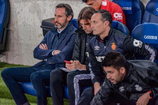 Vicente Moreno, en el banquillo visitante del Real Arena, durante el partido que el Real Mallorca disputó en San Sebastián.