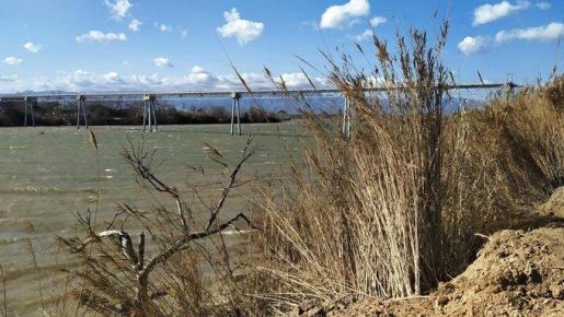 Imagen del río Ebro a la altura de Campredó.