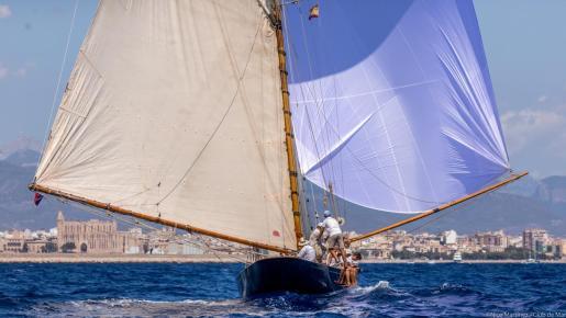 El 'Love & War', ante la fachada marítima de Palma.