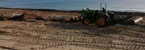 El Ajuntament de Manacor inicia la limpieza de las playas azotadas por la borrasca 'Gloria'