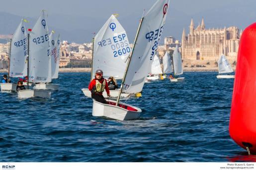 Imagen de las pruebas de Optimist del Trofeo Pro-Rigging, en la Bahía de Palma.