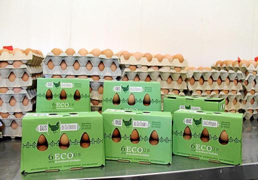 Los huevos ecológicos se comercializan en supermercados.