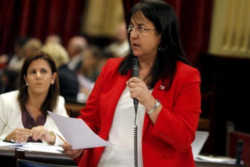 Carmen Castro, hoy en el Parlament.