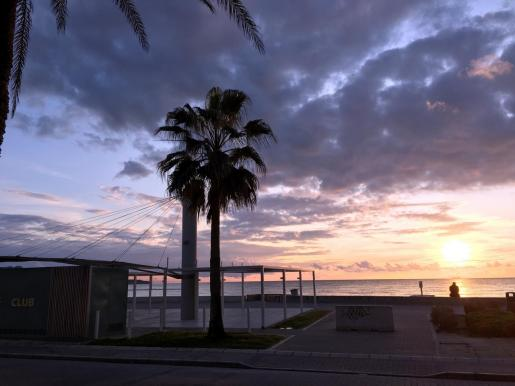 Imagen de la Playa de Palma.