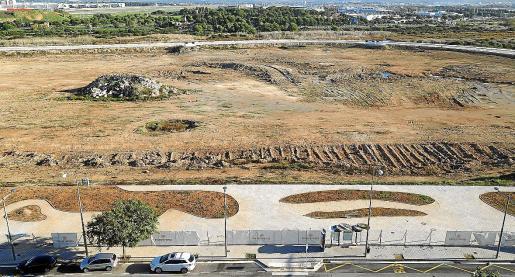 Vista de los terrenos de ses Fontanelles, donde se ha proyectado una gran superficie comercial.