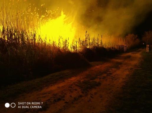 Los vecinos lamentan que los incendios son habituales en esta zona.
