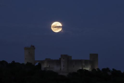 La superluna en Palma, sobre el Castell de Bellver.