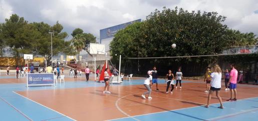 Imagen de una Diada de deporte base en el polideportivo de Sant Ferran.