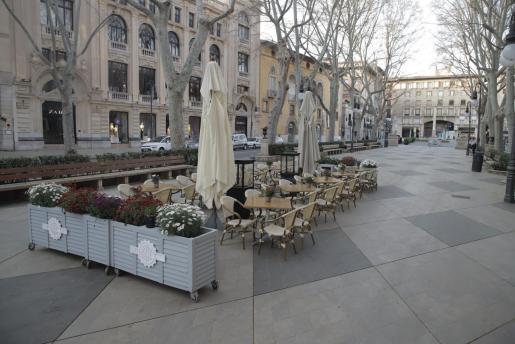 Imagen del Passeig de Es Born de Palma este domingo por la mañana.