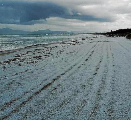 La playa de Muro quedó toda blanca.