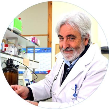El doctor Andreu Palou. Foto: CAIB.