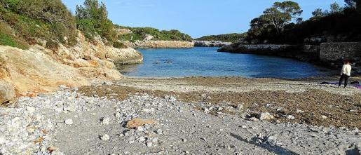 En Cala sa Nau sería necesaria la regeneración del 25 % de la arena de la playa, que fue arrasada por 'Gloria'.