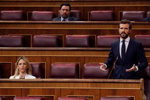 El líder del PP, Pablo Casado, durante la primera sesión de control al Gobierno.