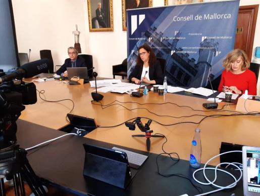 Imagen del pleno telemático del Consell de Mallorca celebrado este jueves.