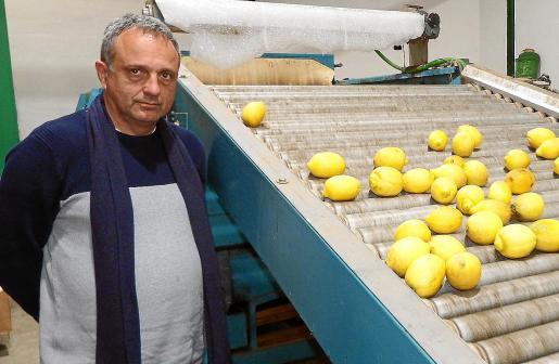 Miquel Gual, en una imagen de archivo.