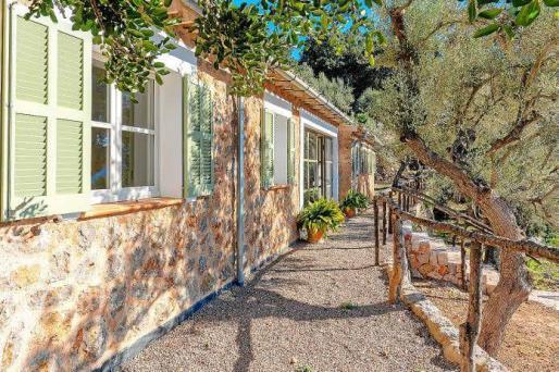 Tanto la casa principal como la de invitados tienen paredes de piedra y ante ellas se extiende un jardín natural de olivos.