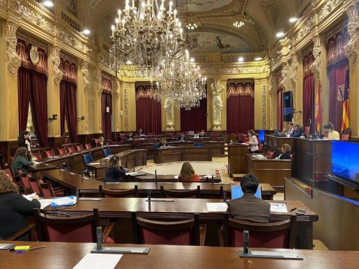 El pleno del Parlament balearse reunió este martes en versión reducida por primera vez desde el estado de alarma.