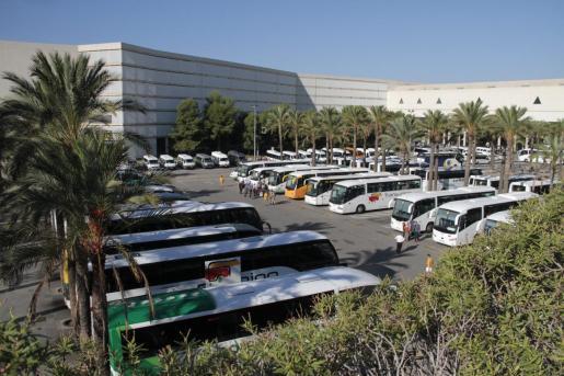 Las patronales del transporte discrecional turístico tienen que cumplir todos los requisitos de protección en el interior de los vehículos.