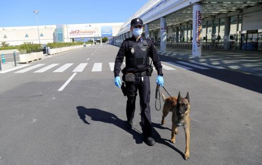 Patrullando por el exterior de las instalaciones aeroportuarias.