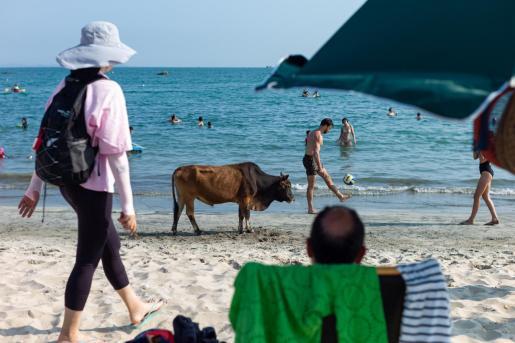 Numerosas personas disfrutando de la playa en Hong Kong.