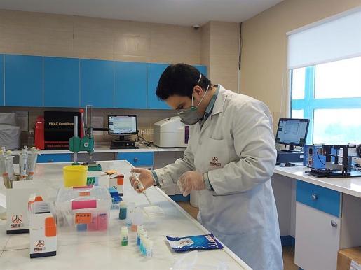 Trabajo con las pruebas diagnósticas en un laboratorio.
